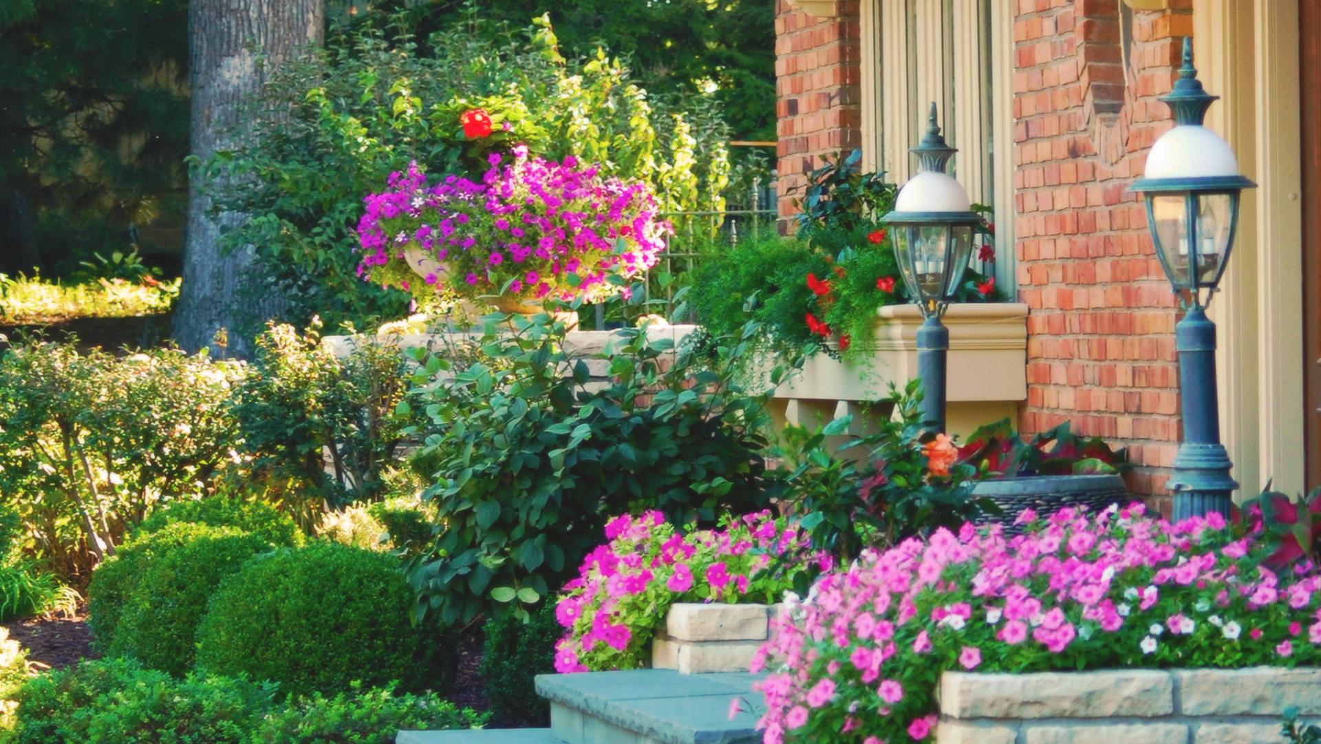 Green View Nursery Inc Enjoy Illinois