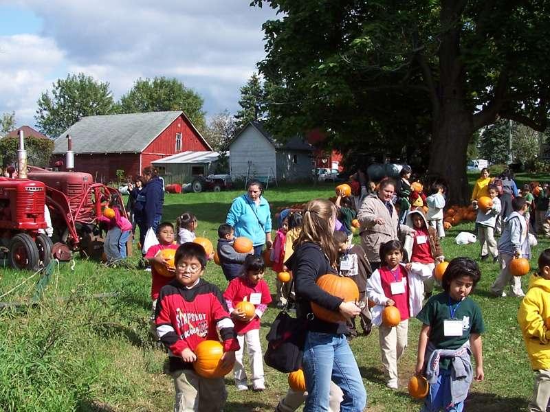 mill creek pumpkin patch quincy il