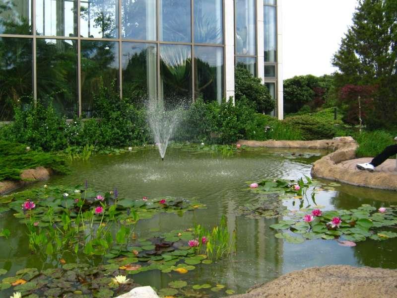 botanical garden jakarta