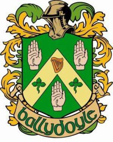 Ballydoyle Irish Pub & Restaurant in Aurora, IL