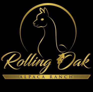 Rolling Oak Alpaca Ranch | Enjoy Illinois