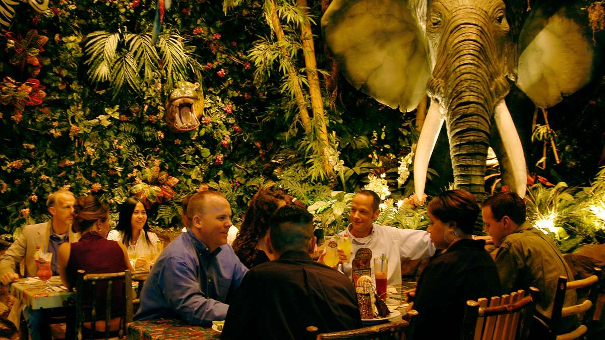 Rainforest Cafe Gurnee Enjoy Illinois