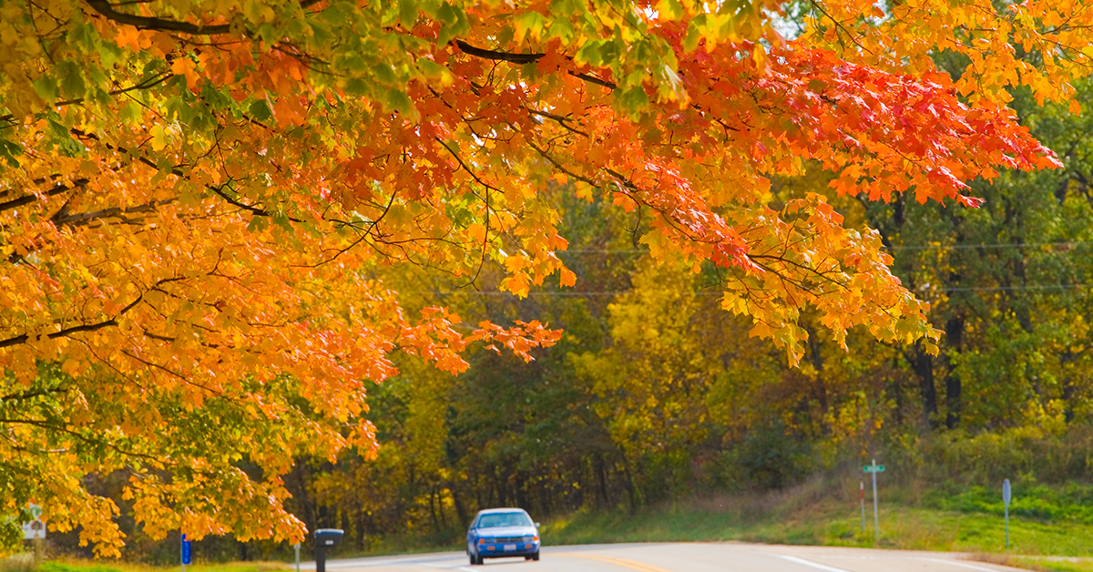Autumn Kicks Off With A Splash Of Fall Color The Official Enjoy Illinois Blog