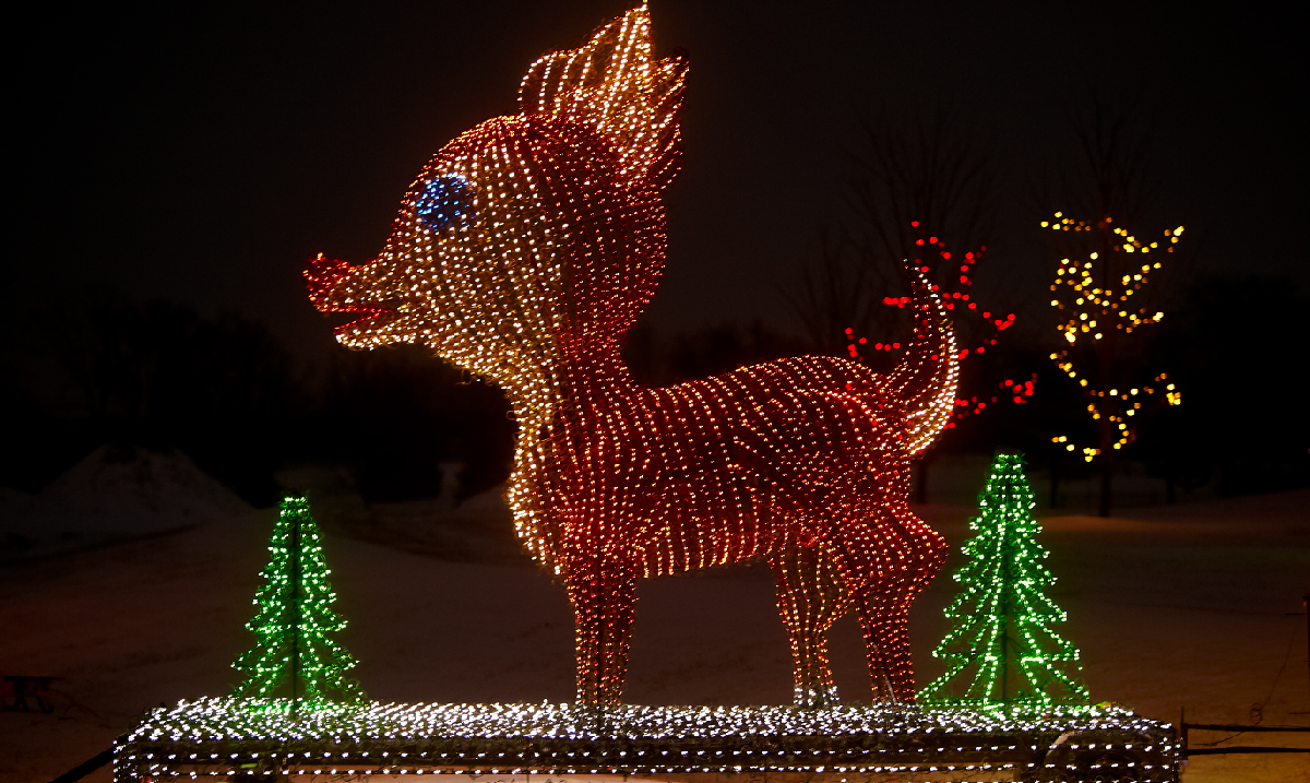 Christmas Displays In Illinois 2020 12 Must See Light Displays in Illinois