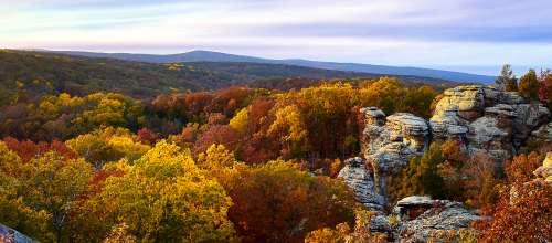 Fall In Illinois