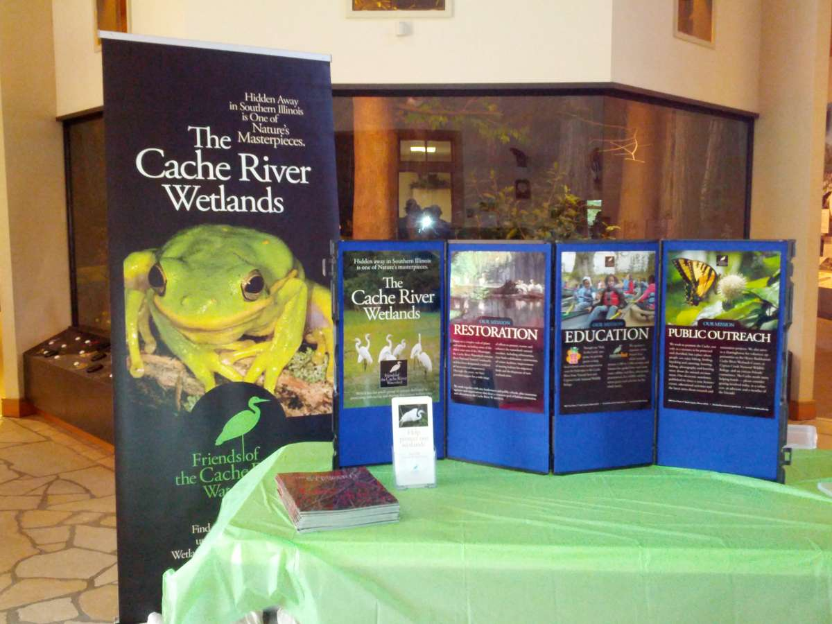 Displays on the unique biodiversity of the flora and fauna of the wetlands