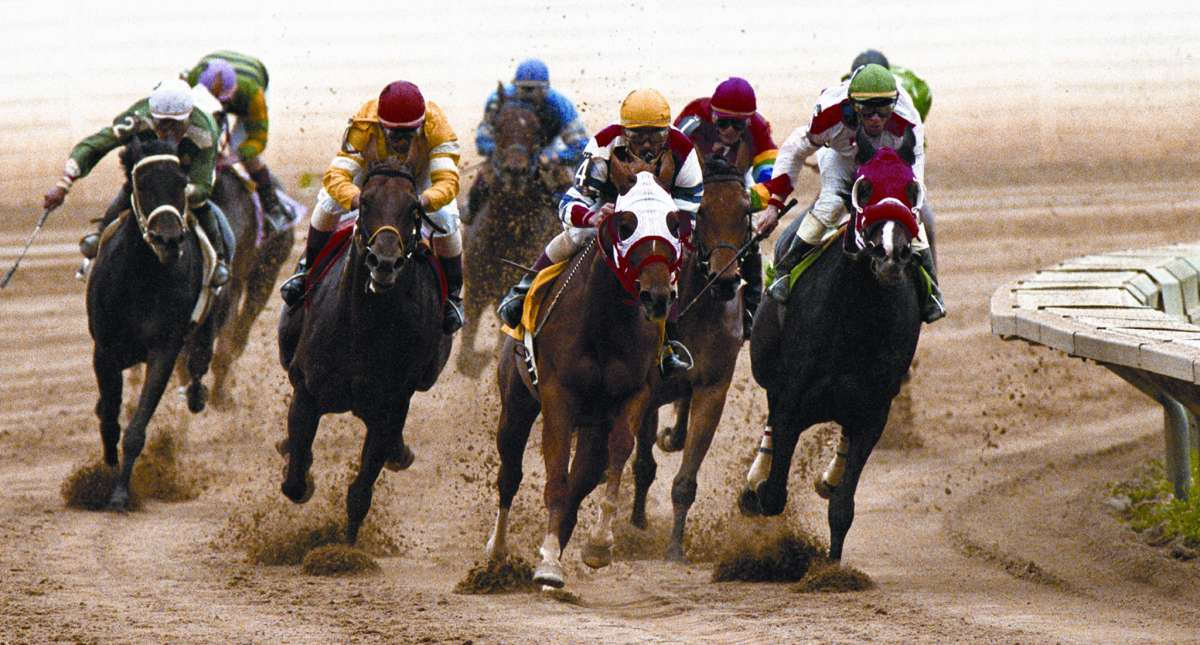 Horse Racing In Illinois