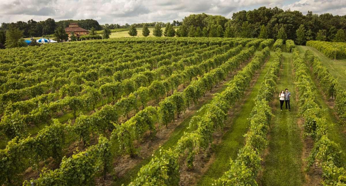 Illinois Farms  U0026 Orchards